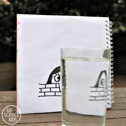 Fun art meets science activity - flip drawings using refraction of light