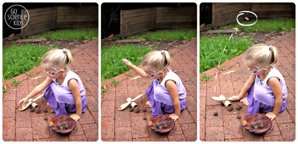 Playing with the DIY catapult in the backyard - preschool physics fun for kids
