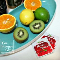 Sweet vs Sour: confuse your taste buds with Miracle Berries. Fun taste science for kids