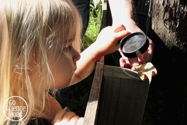 Toddler magnifying glass fire