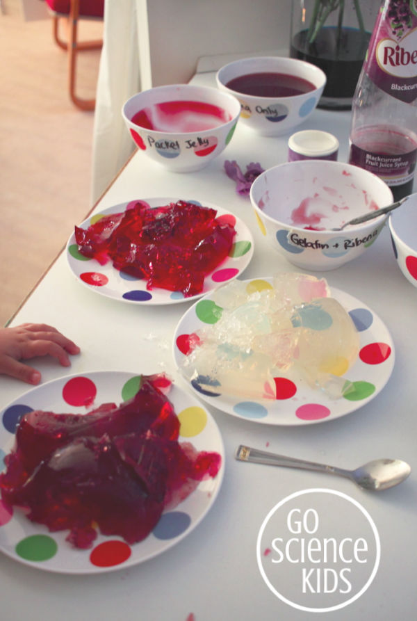 Jelly and gelatin science