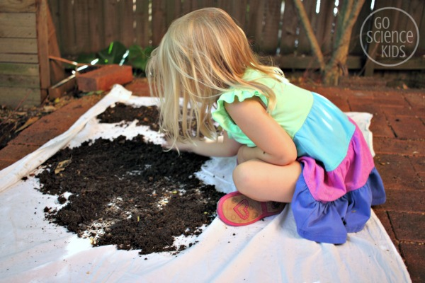 Preschool science - what lives in dirt