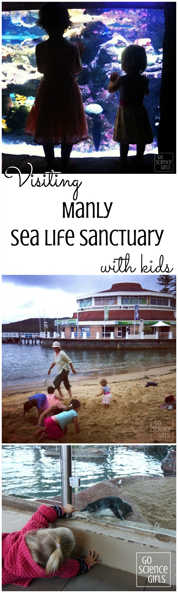 Visiting Manly Sea Life Sanctuary with kids - a review by Go Science Kids