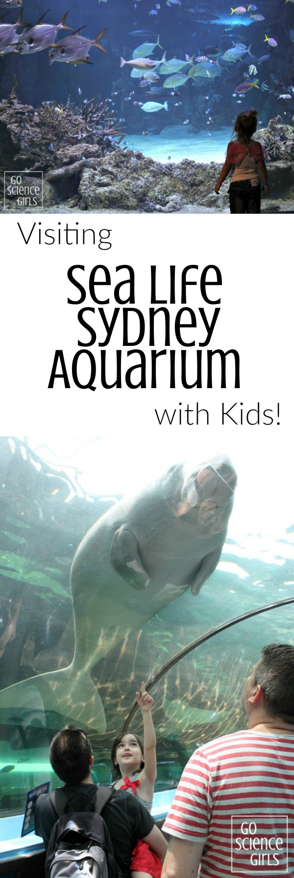 Visiting Sea Life Sydney Aquarium with little kids - how to book, what to expect, how to make the most of your adventure - and the fun science you can experience on the way. A review by Go Science Kids.
