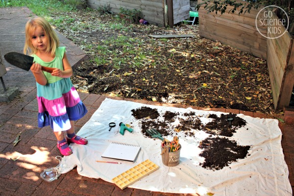 What lives in dirt - explorative backyard science for preschoolers