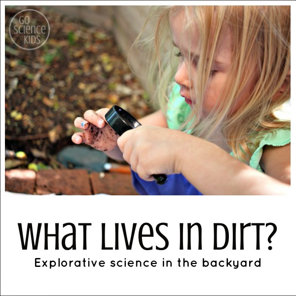What lives in dirt - outdoor explorative science for preschoolers