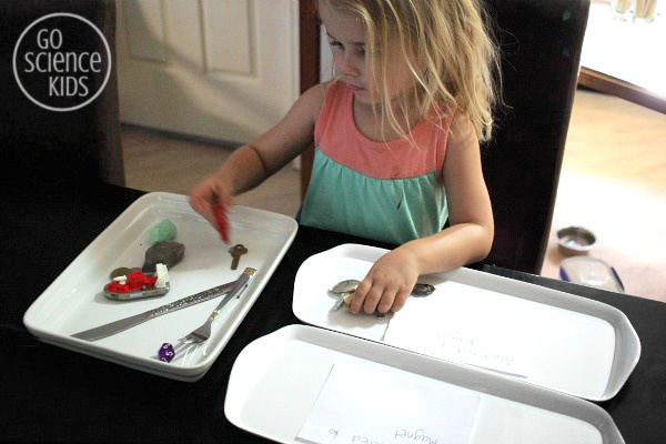 Sorting magnetic and non-magnetic items - magnet science for kids