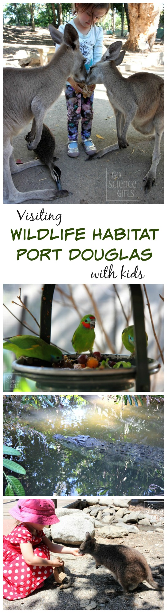 Wildlife Habitat Port Douglas - awesome way to incorporate science & nature when travelling with little kids in Australia's tropical north queensland