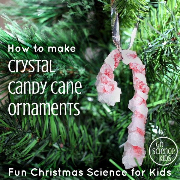 How to make Crystal Candy Cane Ornaments - fun Christmas science project for kids