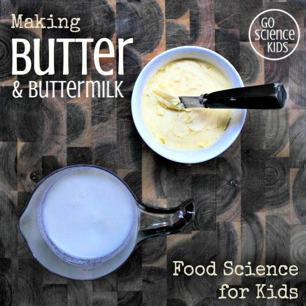 Making butter - food science for kids