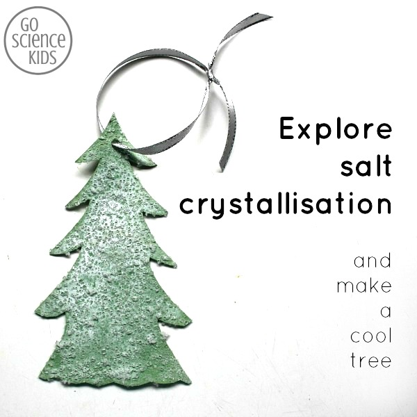 Explore salt crystalisation and make a cool winter snow fir tree - fun crystal science for kids