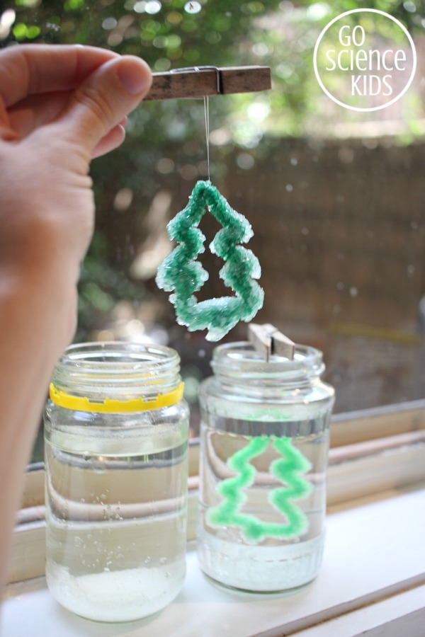 Making Borax crystal Christmas trees - fun science for kids