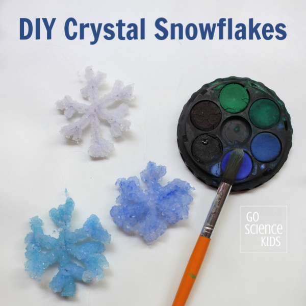 How to make the best Crystal Snowflakes – Go Science Kids