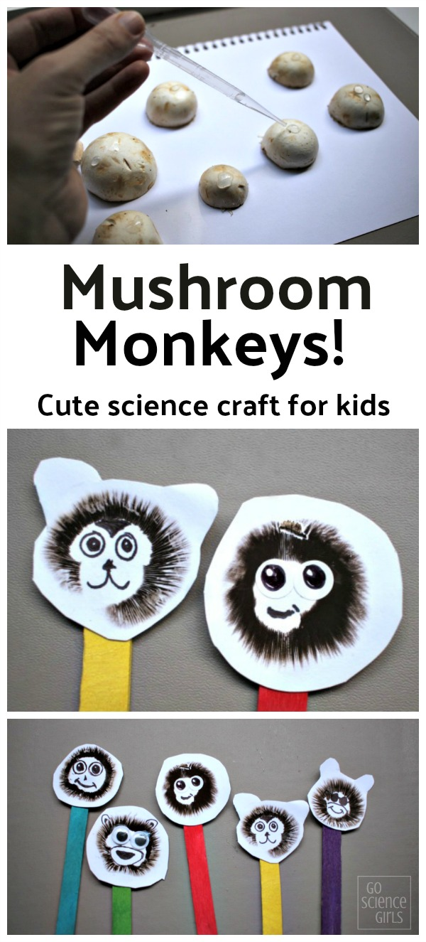 Mushroom monkeys! Cute science craft kids can make & learn about mushroom biology and spore prints