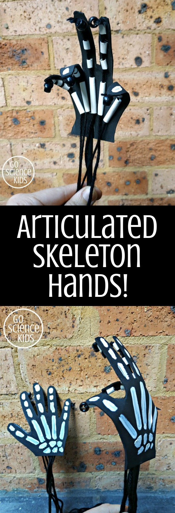 Articulated skeleton hands - fun science craft for kids to make