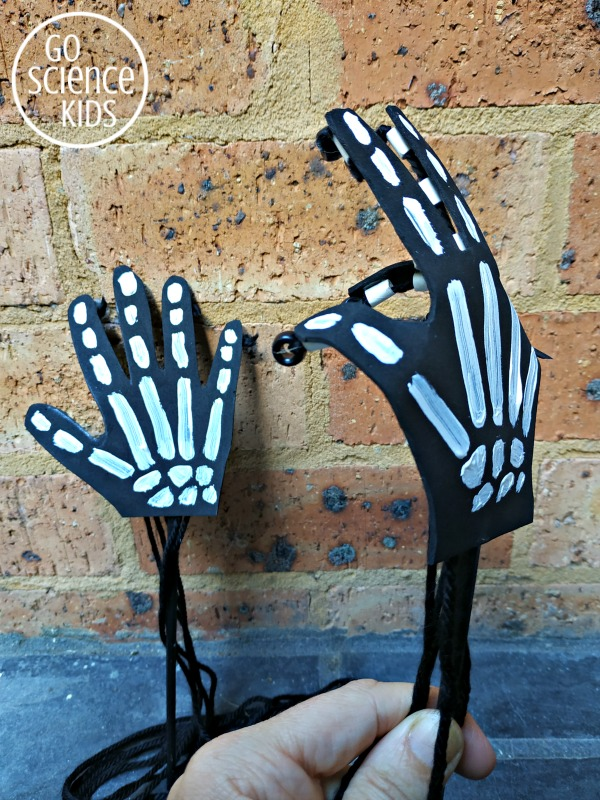 diy skeleton hand