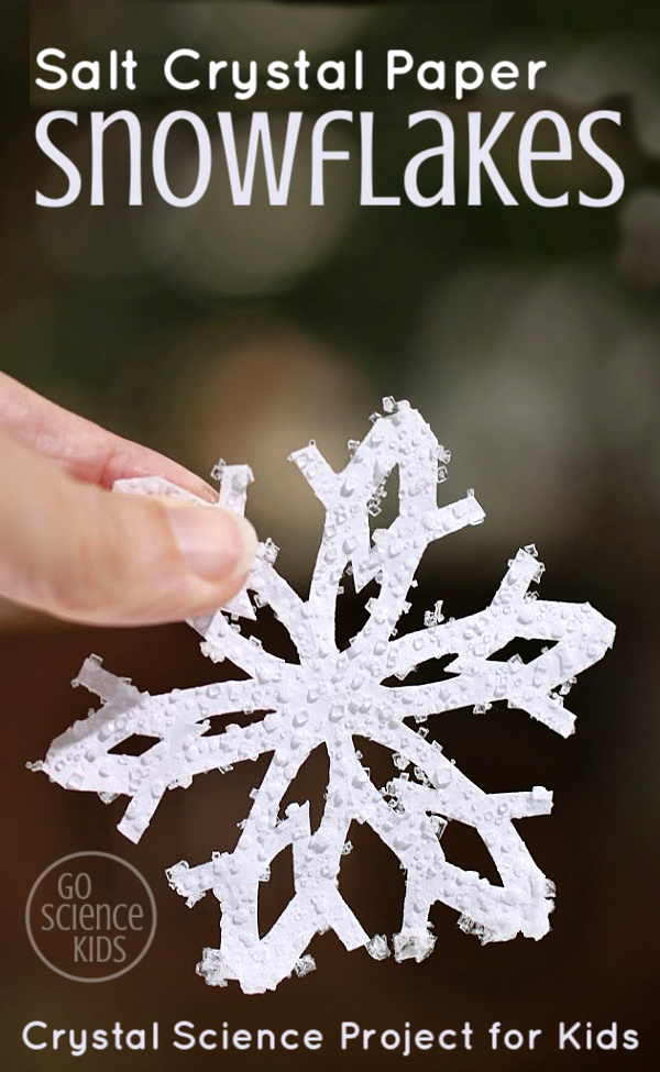 Salt Crystal Paper Snowflakes - crystal science project for kids 1