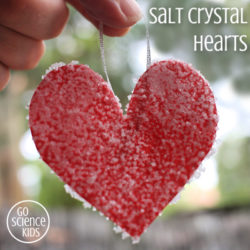 Salt Crystal Hearts Science Craft STEAM idea for kids