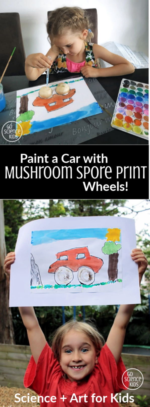 Paint a car with mushroom spore print wheels - fun art + science activity for kids