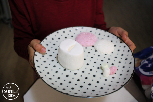 different types of marshmallows coming out of the microwave