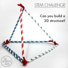 STEM Challenge: Can you build a 3D structure?