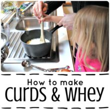 How to make curds and whey