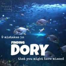 9+ Sea-life Mistakes in Finding Dory You Might Have Missed