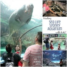Visiting Sea Life Sydney Aquarium with Kids